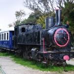 Парад старинных паровозов в Польше
