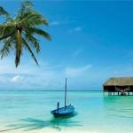 Прогнозы туроператоров по Шри-Ланке