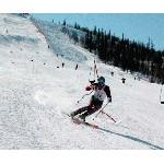 Сезон: снова навострили лыжи!