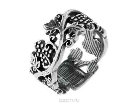 Купить Кольцо Jenavi Коллекция Харизма Седна, цвет: серебряный. m4503090. Размер 18