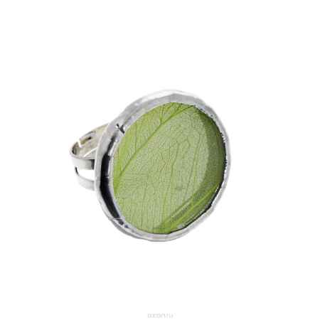 Купить Кольцо Естественный отбор
