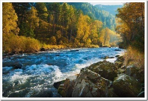 Почему отдых на Алтае рекомендован многим?