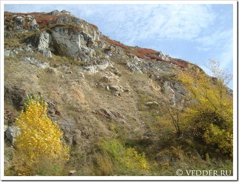 Почему отдыхать на Алтае рекомендуется всем?