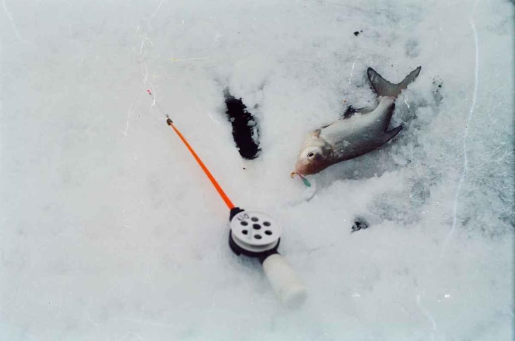 Как сделать удочку для зимней рыбалки