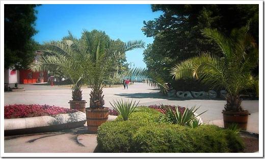 Посещение Приморского парка в Варне
