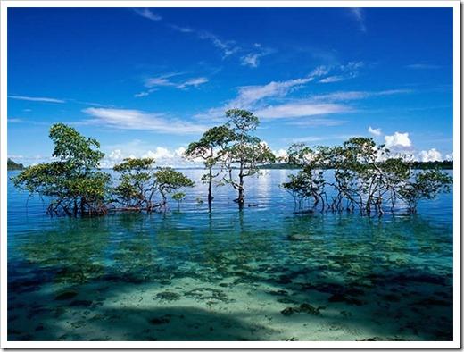 Паром до Андаманских островов