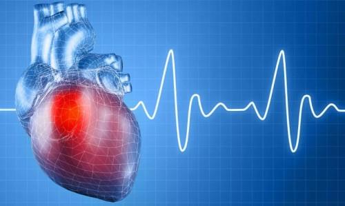 мониторинг сердца