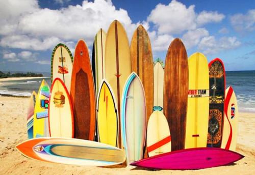 Как выбрать доску для серфинга