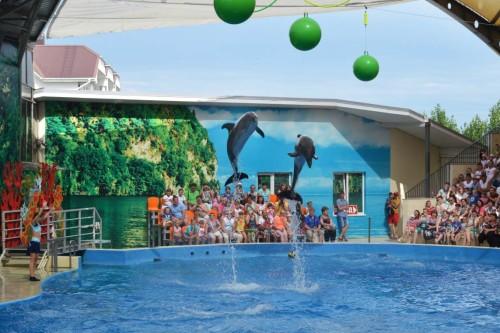 Океанариум и дельфинарий